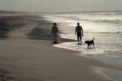 Dänemark mit hund am strand